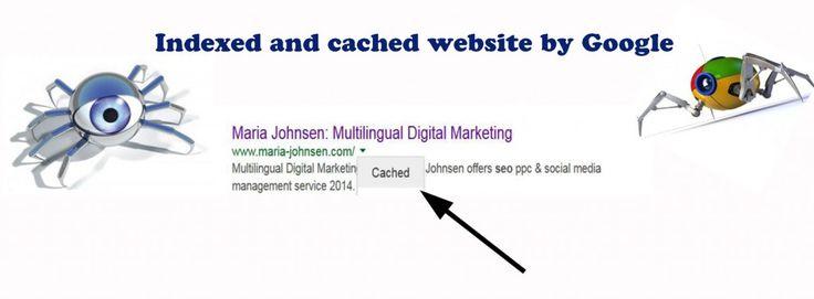 Solving Google Cache Issue After Penguin Penguin 3.0 Update | Multilingual SEO Blog - digital marketing tips