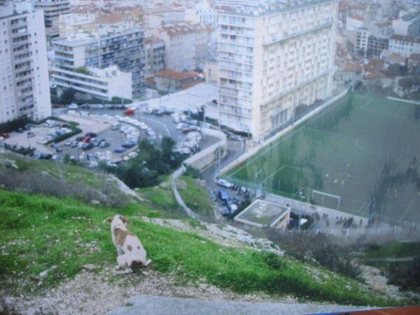 1° riScatto urbano (Marsiglia) di TheRealMadda. Saranno conteggiati i RT al seguente tweet: https://twitter.com/TheRealMadda/status/376631716477026304