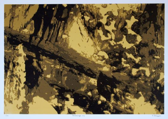 """""""Dreamscape 23"""", one of a series of 24 prints"""