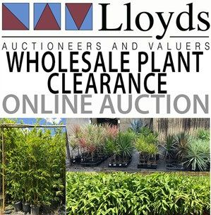 GET IN QUICK for our WHOLESALE PLANT CLEARANCE ONLINE AUCTION!!