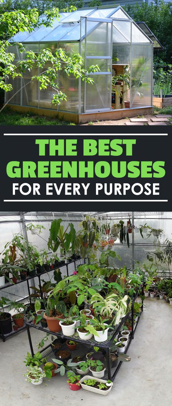 There are hundreds of types of greenhouses out there, so choosing the best greenhouse can be daunting. Check out our buyer's guide to make the right choice.