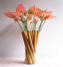 Résultats de recherche d'images pour «anthurium flower arrangement»