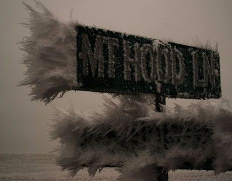 Путешествие на юг в сторону Бенд, штат Орегон на шоссе 97, мы увидели этот дорожный знак, покрытый льдом.