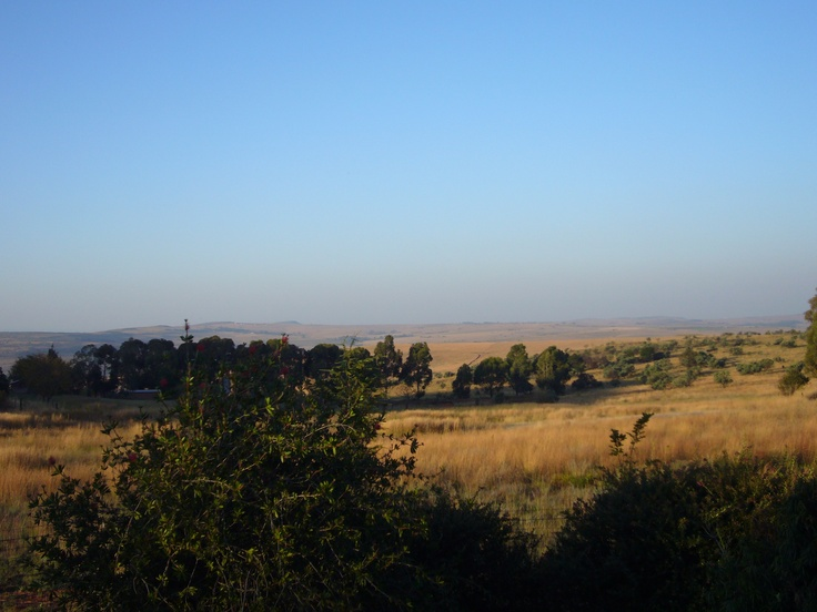 The stoop of tranquility. A view over the Cradle of Humankind that sadly, I may never see again.