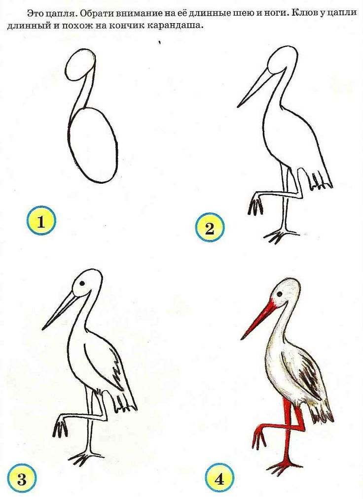 (2016-06) ... en stork