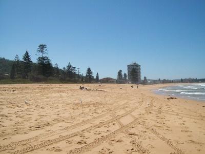 193443746464943282 in addition  likewise  on collaroy beach playground
