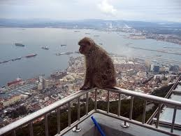 View from the Rock of Gibraltar.