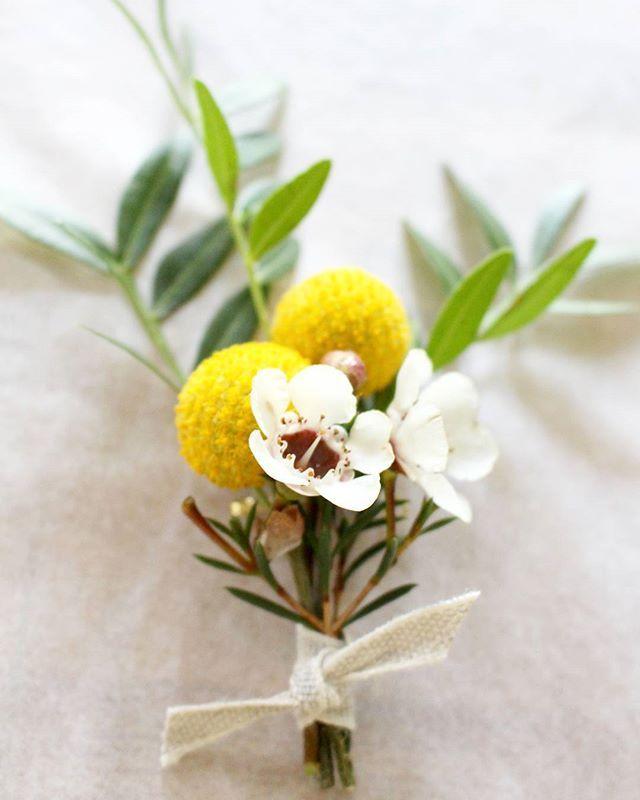 La boutonnière  de Ludovic #boutonniere #fleursmariage #decomariage #futuremariee2017 #bouquetdemariee #floriste #mariage#fleuristemariage #fleuristemariagelyon #fleuristelyon #monlyon #instaflowers #lyonnaise #createurslyon #lapetiteboutiquedefleurs