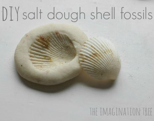 Create shell and nature imprints in salt dough to make fossil-like treasures from adventures this summer!