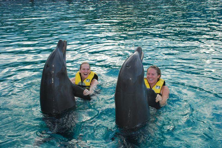 Ocean World er en fantastisk oplevelse for alle, der elsker dyr og livsbekræftende oplevelser. Mulighederne er mange i Ocean World. I kan eksempelvis svømme med delfiner, rokker og endda hajer og komme helt tæt på søløver og delfiner eller blot få adgang til parkens flotte dyreshows.  http://www.falklauritsen.dk/rejser/central-amerika/den-dominikanske-republik