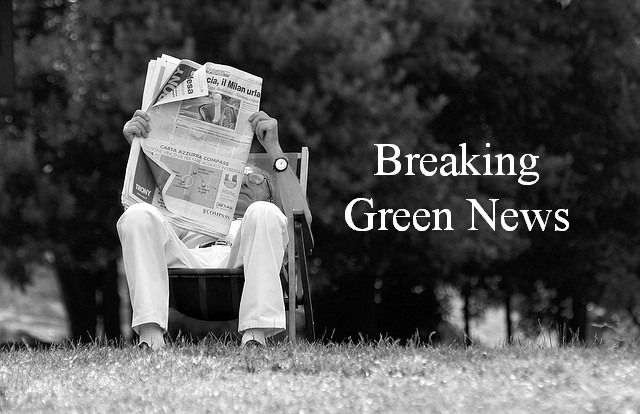 Breaking Green News: cancer linked ingredients in beauty products are going to be phased out by corporate giant Proctor & Gamble!