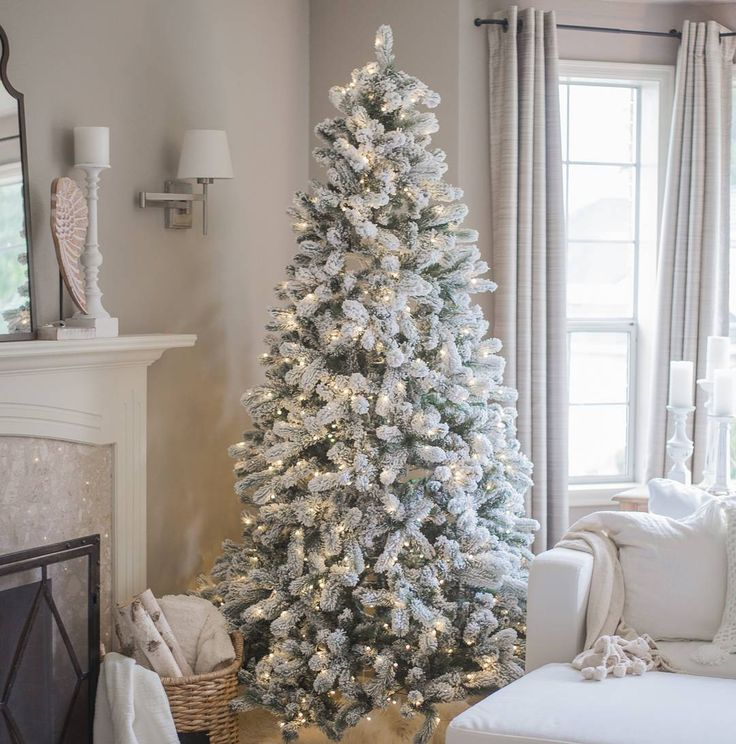 25 Unique Christmas Trees On Sale Ideas Pinterest