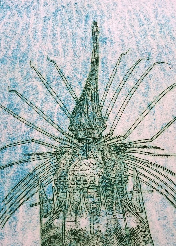 E.T. Kobbertryk af Loricifera (korsetdyr) Nanaloricus gwenae