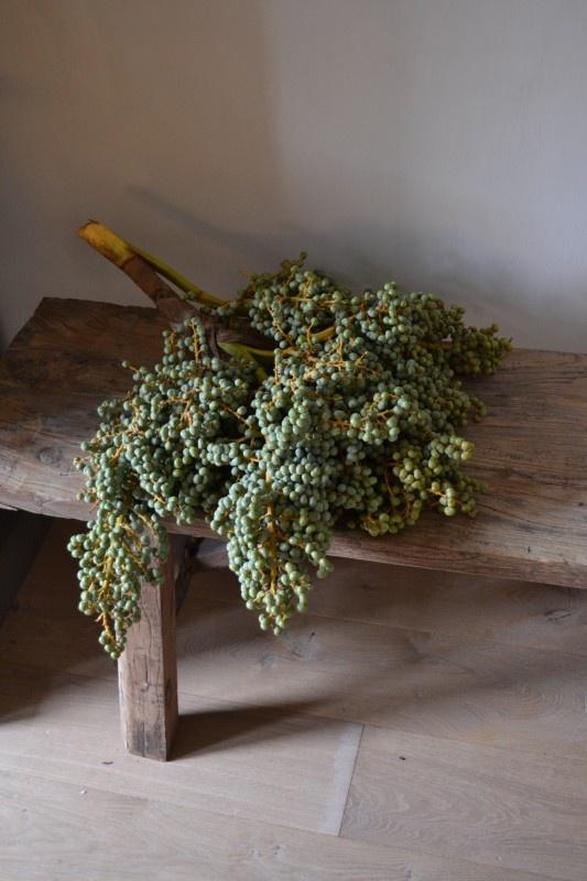 Dadeltak | Woon Accessoires & Decoraties | House of Harrison