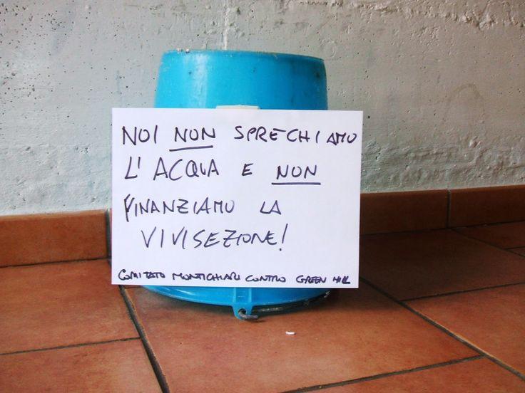 Montichiari Contro Green Hill, comitato: SECCHIO VUOTO! #IlMioSecchioèVuoto #StopIceBucketChallenge #StopVivisection  http://montichiaricontrogreenhill.blogspot.it/2014/08/secchio-vuoto.html