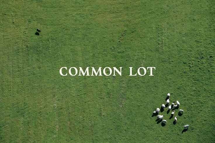 Common Lot on Behance