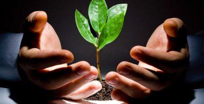 30 de Sfaturi pentru o Viata Financiara Sanatoasa http://laurentiumihai.ro/viata-financiara-sanatoasa/