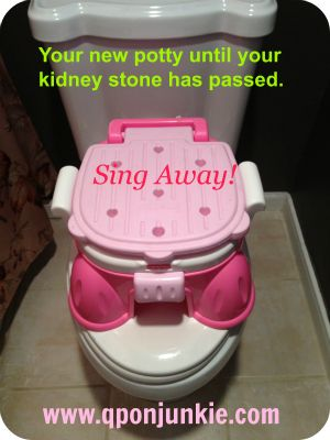 Surviving Kidney Stones...What Doctors Don't Tell You. Read this funny story and share with Kidney Stone survivors.