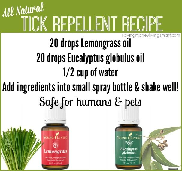 All Natural Tick Repellent Recipe safe for humans and pets