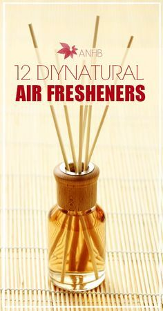 Don't breathe in toxic chemicals! Try out these 12 natural air fresheners instead.