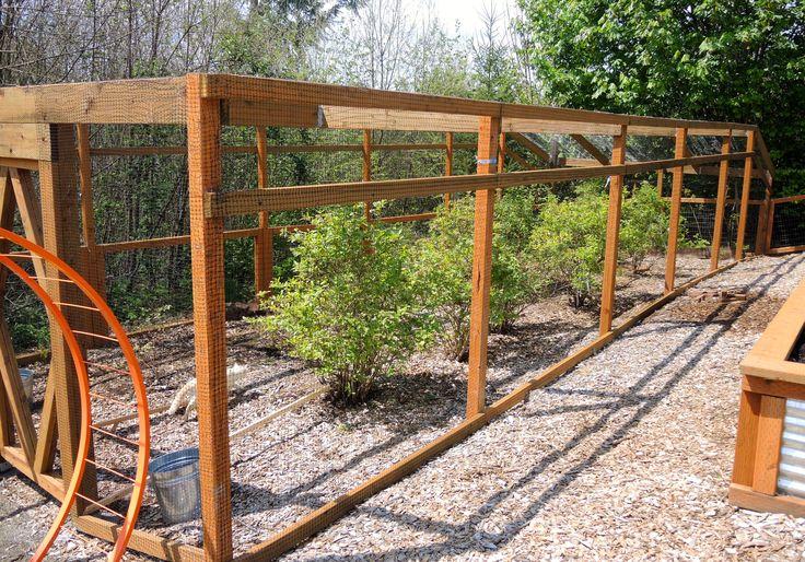 Blueberry Cage 1 Gardening Pinterest The O Jays