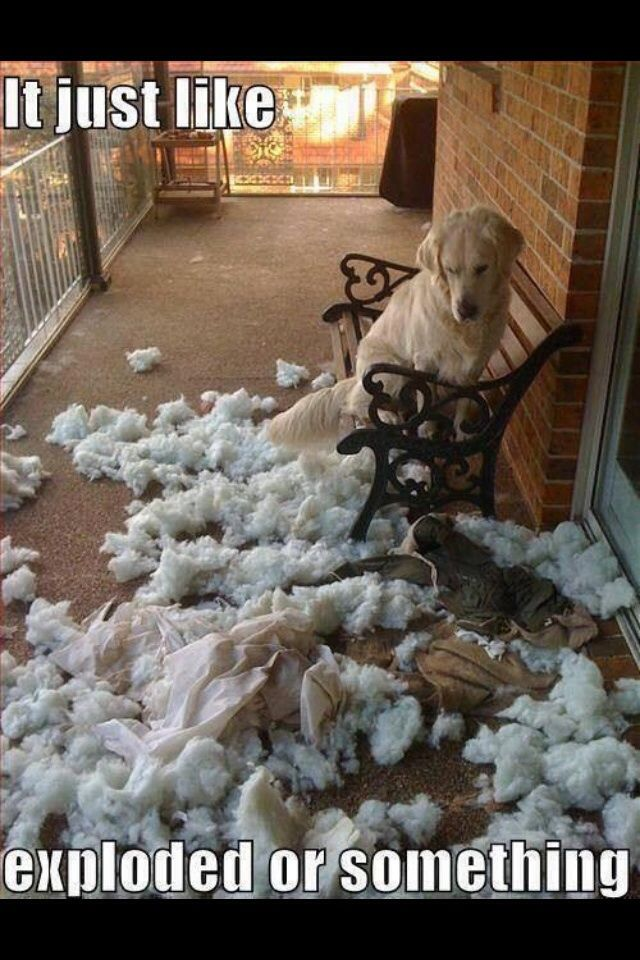 It just like... exploded of something