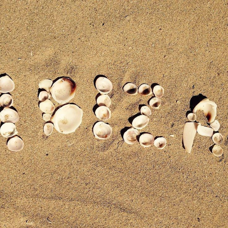 Best bars nightlife and club on Ibiza  1. Nikki Beach Ibiza - hip beach club with bucketload of glamour 2. Amnesia - venue is an 18th century farmhouse 3. La Bodega - bar lounge cafe restaurant with the island vibe 4. Pacha - guarantee of the presents of celebrities http://amzn.to/2bhQP8u  #lifebehindbars #likeforlike #f4f #tbt #harley #picoftheday #instagood #followme #custom #beautiful #follow #tattoo #me #house #salento #villa #holiday #puglia #countrygirl