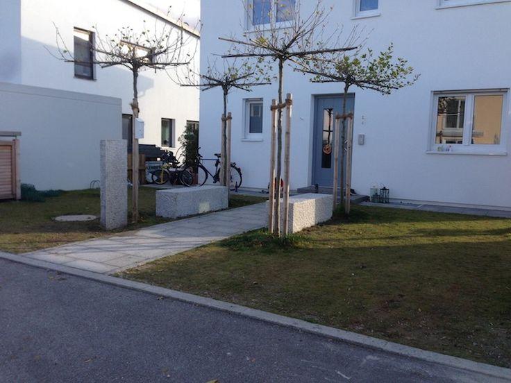 vorgarten mit 4 dachplatanen sitzquadern aus granit und. Black Bedroom Furniture Sets. Home Design Ideas