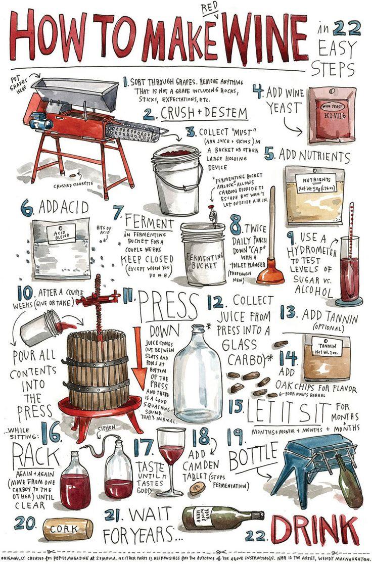 #Infografica Wendy MacNaughton, giornalista e illustratrice ha trovato un modo tutto suo per raccontare come si fa il #vino.