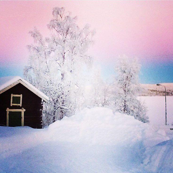 Pink sky! vill hem typ nu!! #Sweden #winter #sunshine #tornedalen #Svanstein #norrland #swedishlapland #lapland #landscape #nature #winterwonderland #picoftheday #sun #bluesky #discoversweden #igscandinavia #scandinavia #thebestofscandinavia #pink #pinksky #view #earth by mickisz