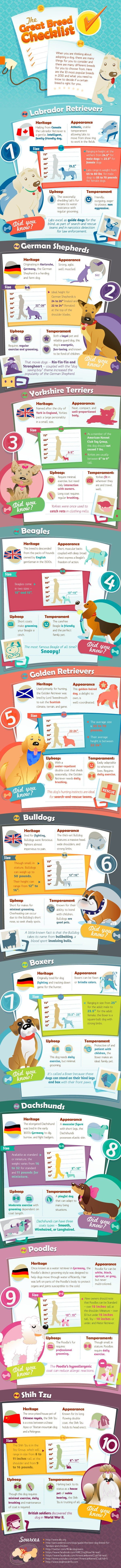 Going to Adopt a dog check out: The Great Breed Checklist - Infographic