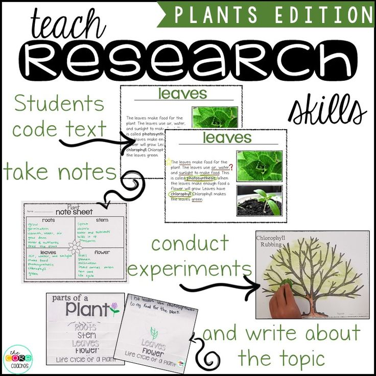 parts of scientific research paper