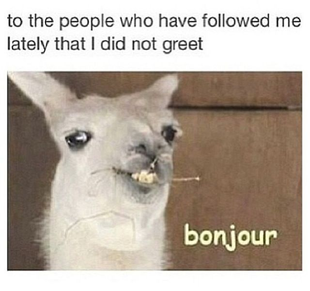:) to the people who recently followed me, just so you know, I'm kind of obsessed with Doctor Who and boybands, so if you don't like one of my boards, just unfollow the board please, not me, unless you don't like any of my boards, then, by all means go ahead and unfollow me. Also,  love it when people comment on my photos, I love replying to people and meeting new people. xx ~Emily