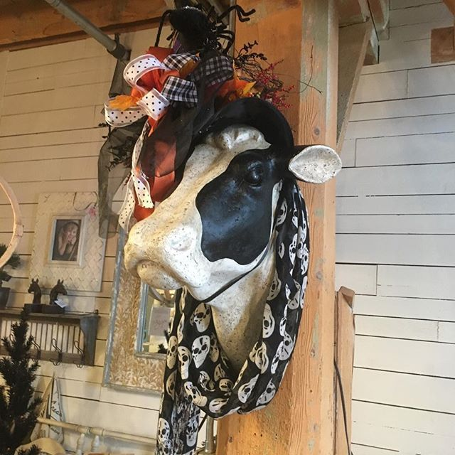 check out everything halloween during our fall sale which begins on monday - Fall Decorations For Sale