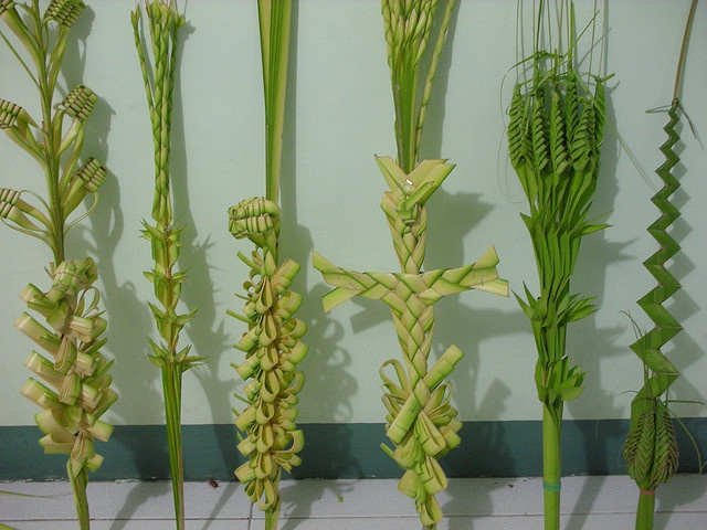 Palm Sunday palm art ,,HOW PRETTY,we make them too,I love these different ones.