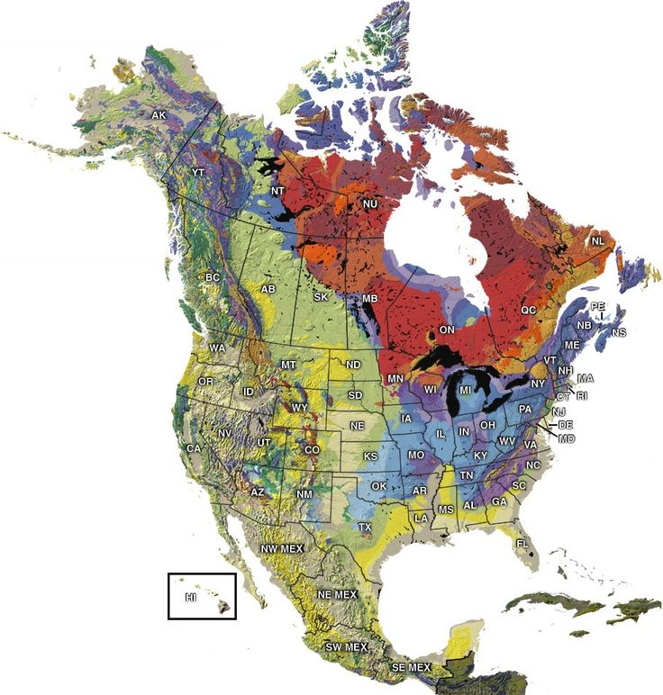 Awesome interactive geologic/paleontological map of North America