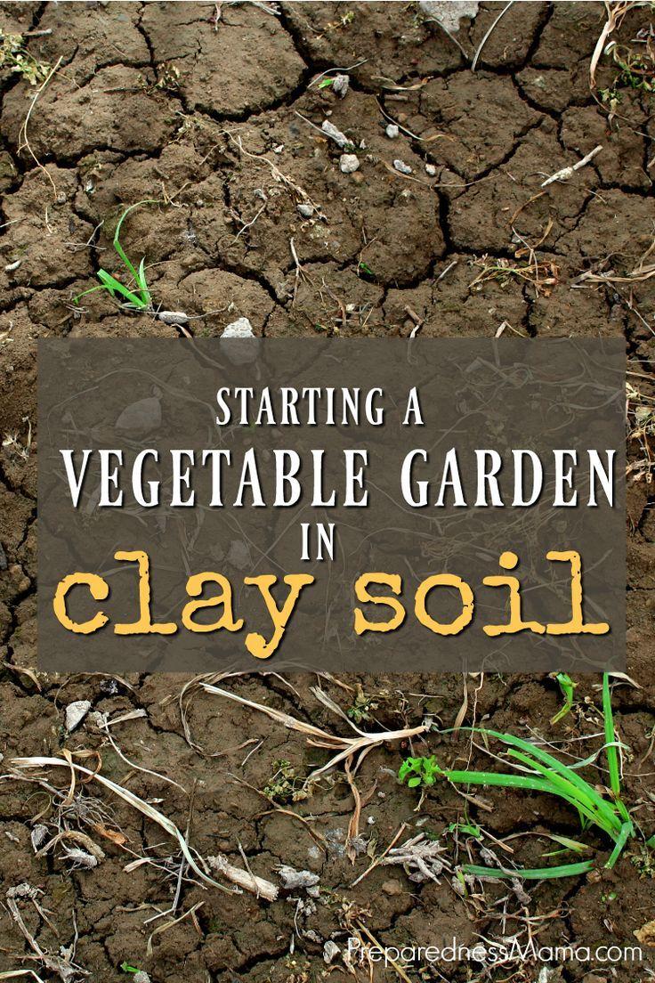 48 best How To Garden! images on Pinterest   Vegetable garden ...