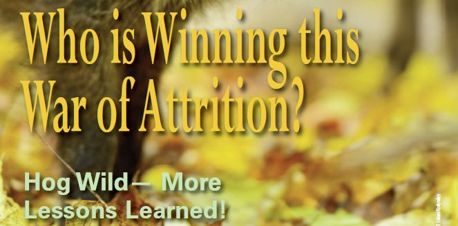 Who is Winning this War of Attrition? http://corvalliscitynews.com/who-is-winning-this-war-of-attrition/