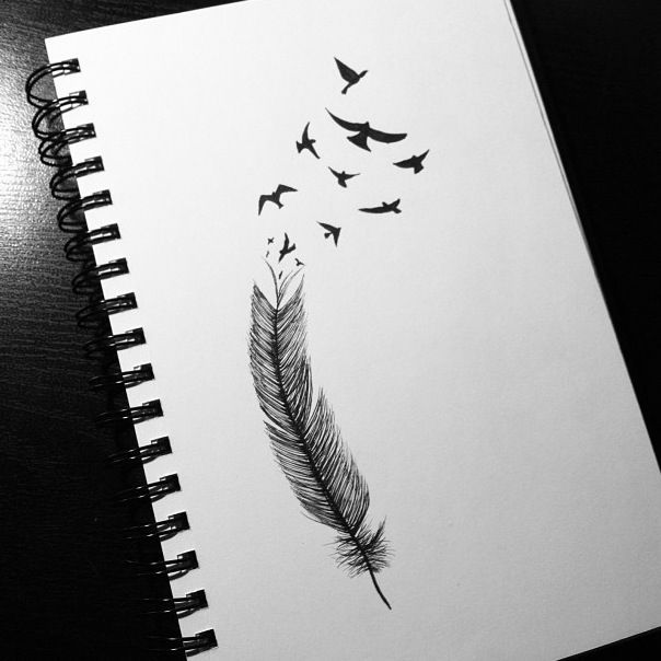 tattoos feather drawin...