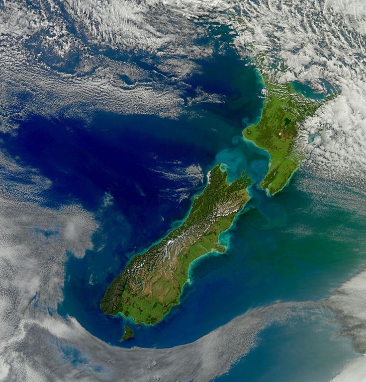 Sediment runoff from heavy rains shows up as lighter streaks and swirls in the water around New Zealand's Cook Strait.