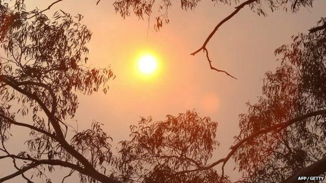 Australia PM's adviser says climate change a UN hoax.