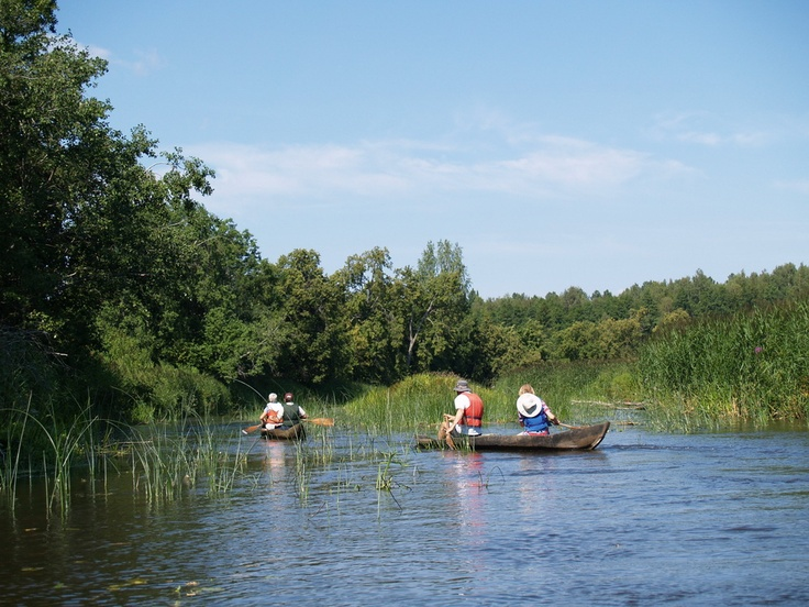 Canoeing with traditional dugout canoes in Soomaa PAN Park / Photo: Aivar Ruukel