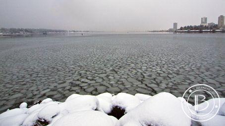 Arctic Ice Flows reach Nanaimo! #VancouverIsland #Nanaimo #LoveWhereYouLive