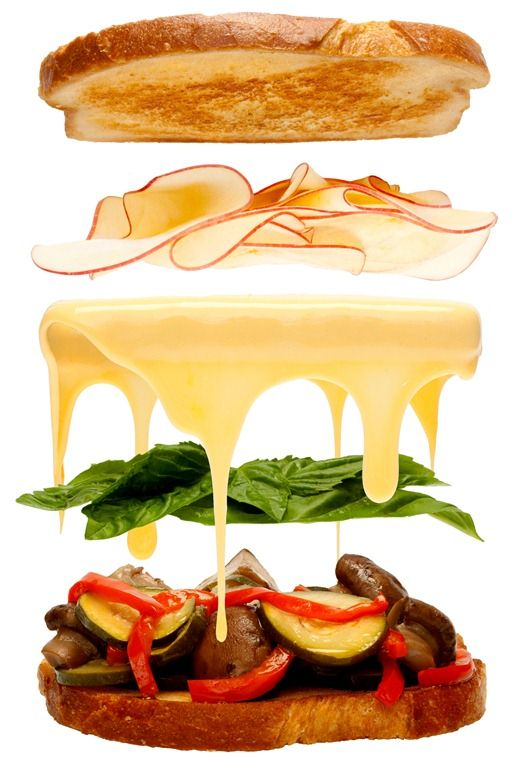 20 best exploded views images on pinterest cutaway for Modernist cuisine ou on food and cooking