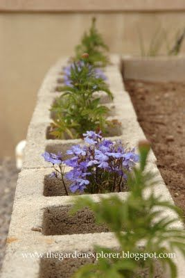 Cinder Block Garden: Plant marigolds/flowers in the holes, genius!