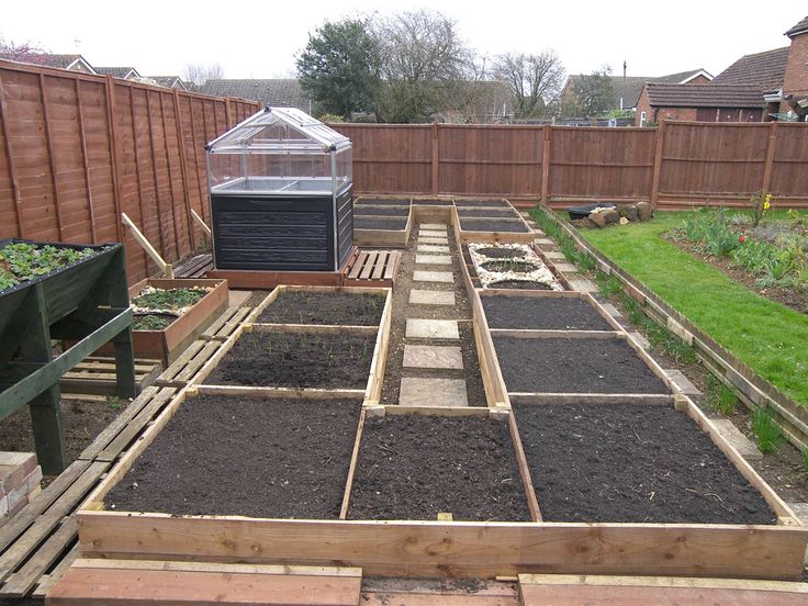 Veg garden finished today