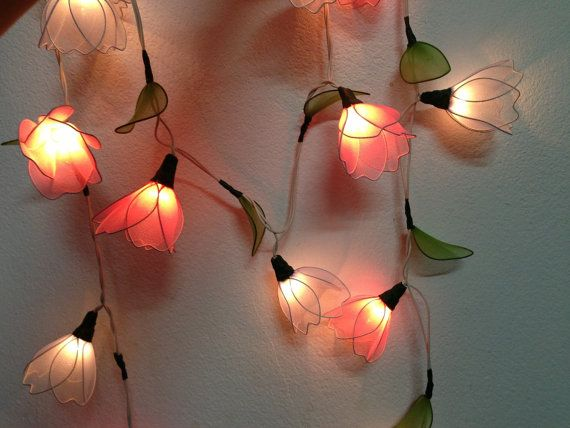 20 Bulbs Purple & Pink Himalayas flower with leaf string by ginew