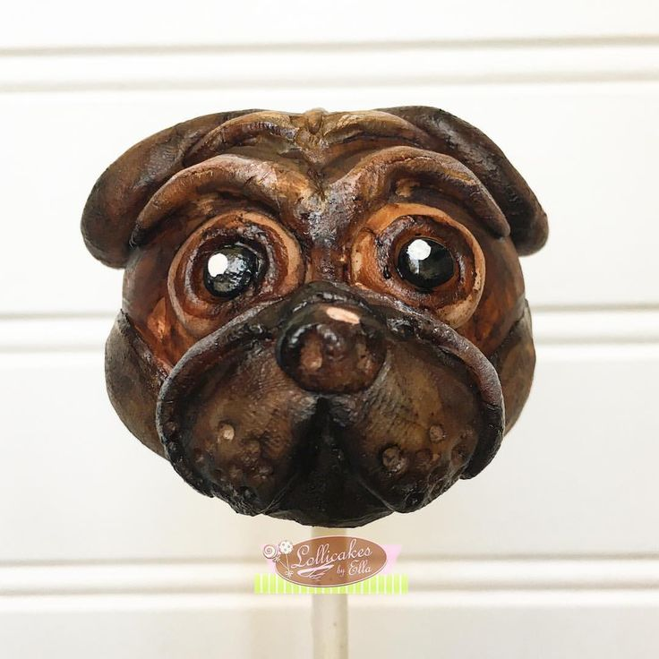 I heard it's National Dog Day #nationaldogday  #dogcakepops so i just had to make one in a cakepop version and this is my sorry excuse for Pug Cakepops, i am allergic to cats and dogs so this is the closest i will have one in my house and it's a lot harder than i thought #pugcakepops #dogcakepops