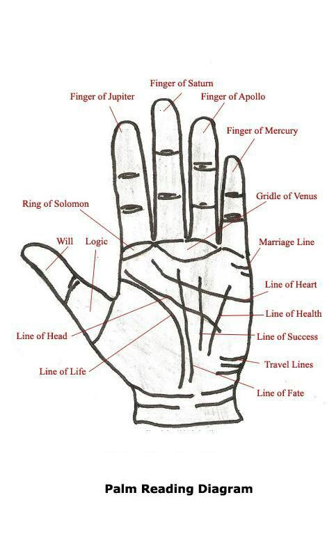 289 Best Palm Reading Images On Pinterest Palmistry Palm Reading