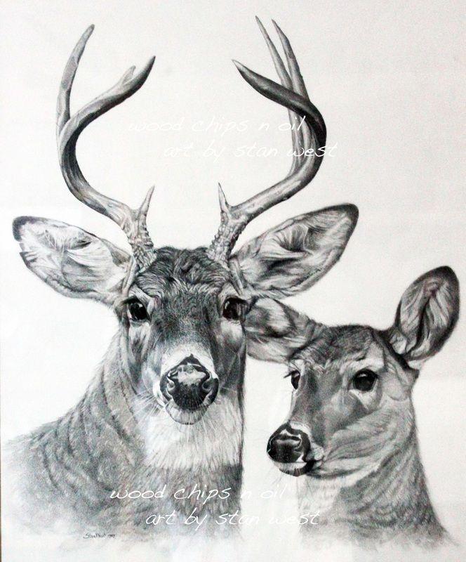 Free Deer Print Wood-Burning Patterns | Burt and Beulah, Whitetail Deer